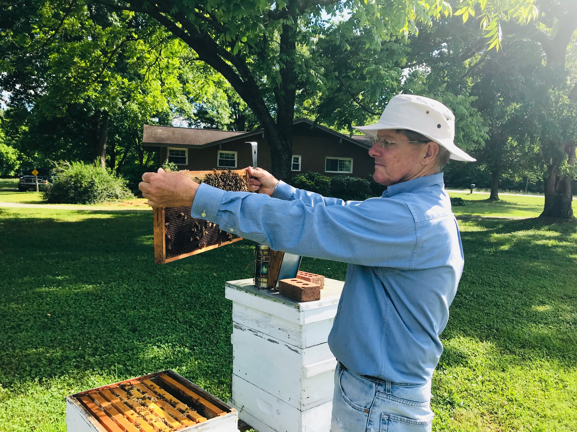 man holding bee frame