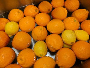 Lemons and blood oranges waiting to be prepped.