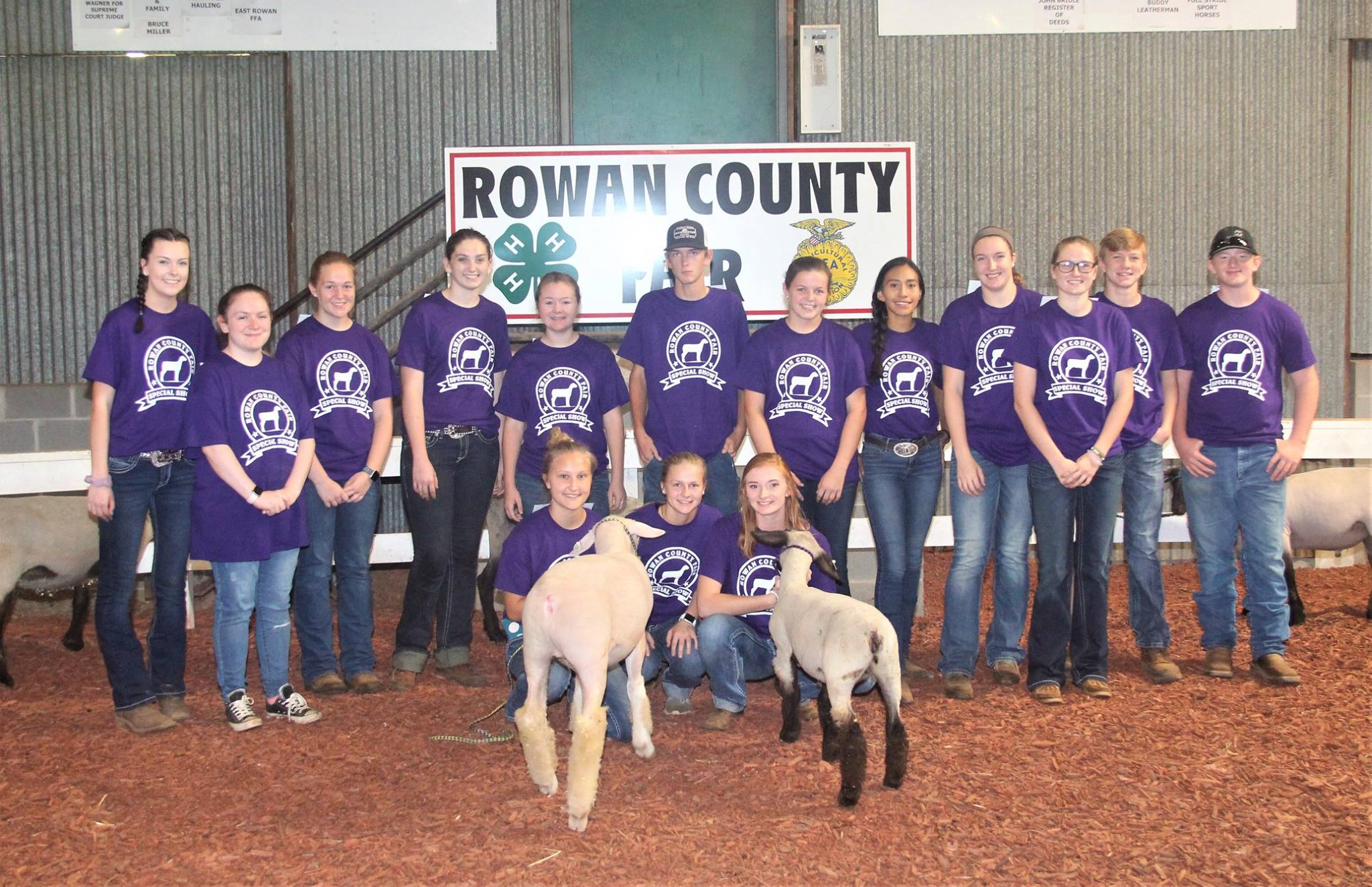 Sheep Show at fair for special needs youth or adults | North