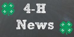 4-H Newsletter logo image