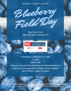 Blueberry Field Day Flyer