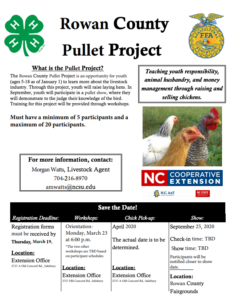 Rowan County Pullet Project Flyer