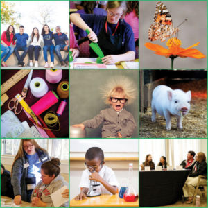 4-H Summer Fun pictures