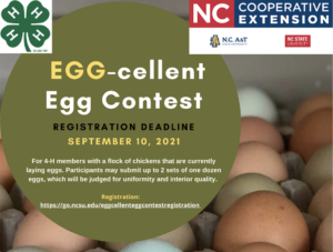 Cover photo for Egg-Cellent Egg Contest for 4-H'ers
